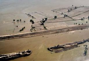 Terreni alluvionati