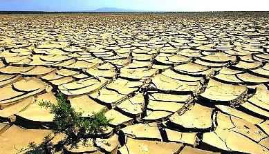 Terreni aridi