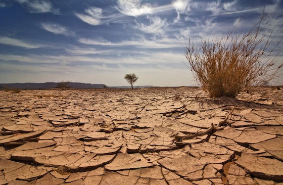 clima e agricoltura