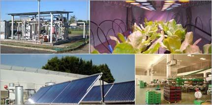 efficienza energetica agricoltura